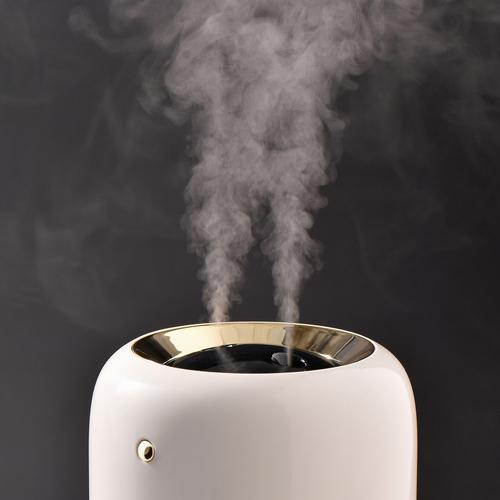 ルアーナ充電式加湿器